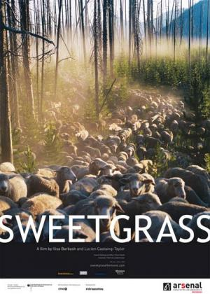 Filmplakat von Sweetgrass (OV)