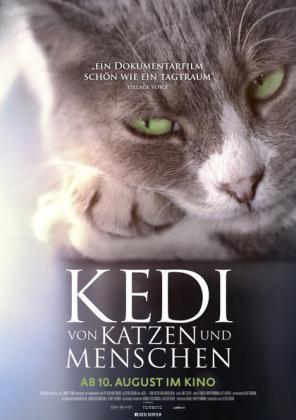 Kedi - Von Katzen und Menschen (OV)