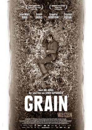 Grain - Weizen (OV)