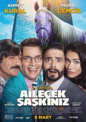 Filmbeschreibung zu Ailecek Saskiniz