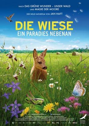 Filmbeschreibung zu Die Wiese - Ein Paradies nebenan