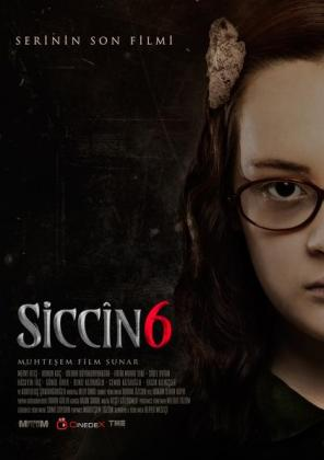 Siccin 6 (OV)