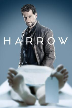 Filmplakat von Harrow - Staffel 1