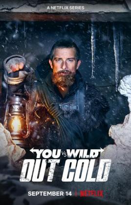 Filmplakat von Du gegen die Wildnis: Abgestürzt - Staffel 1