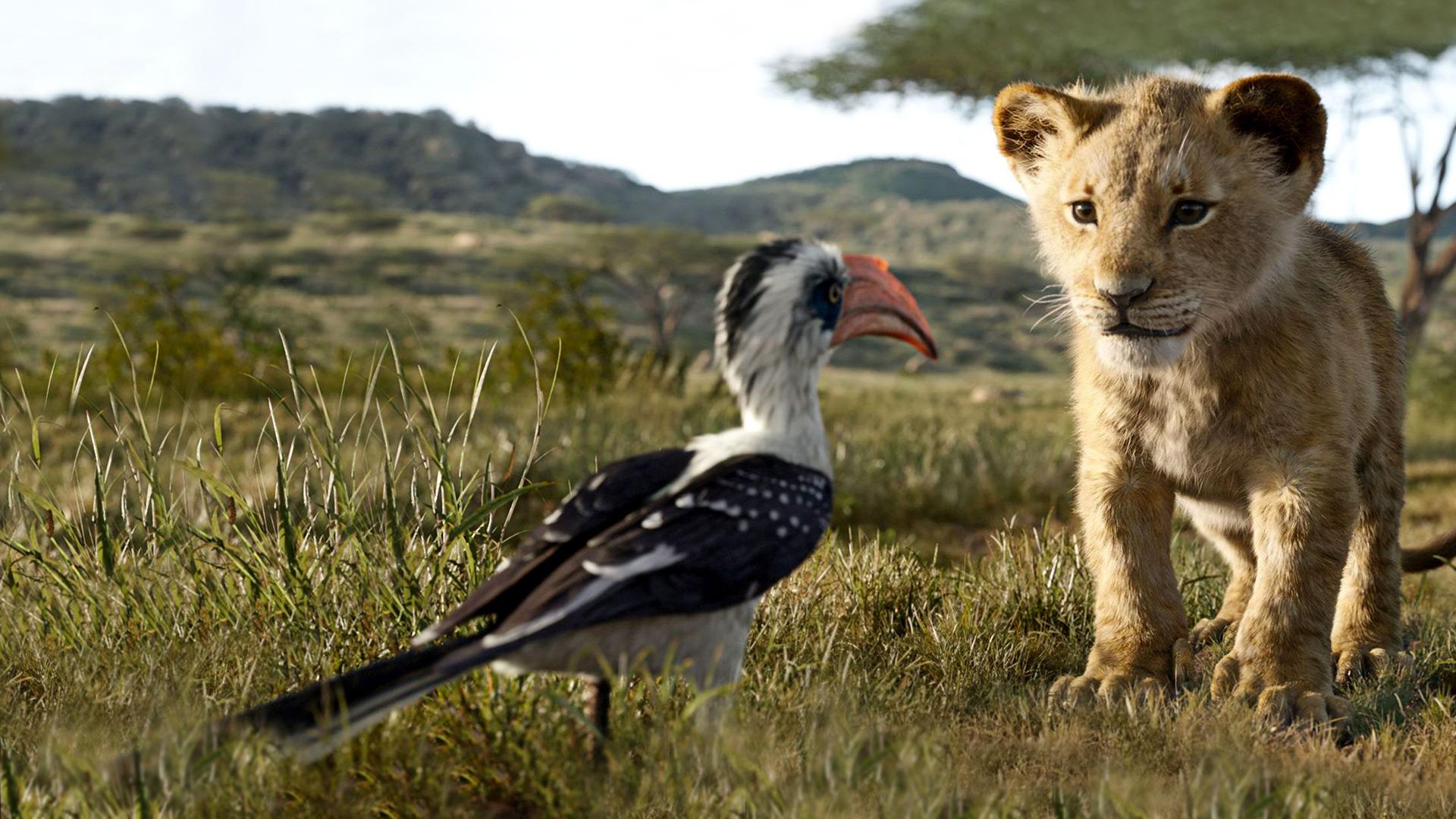 Filmbeschreibung zu Der König der Löwen